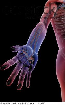Venen Hand
