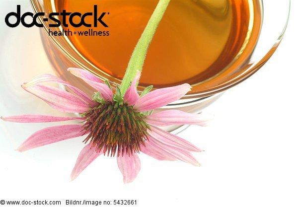 Purple Conflower - medicinal plant - herb - medicinal tea - herbtea - fresh blossom on dry herb - Echinacea purpurea - Echinacea in fiore - pianta medicinale - erba medicinale - te - infuso -