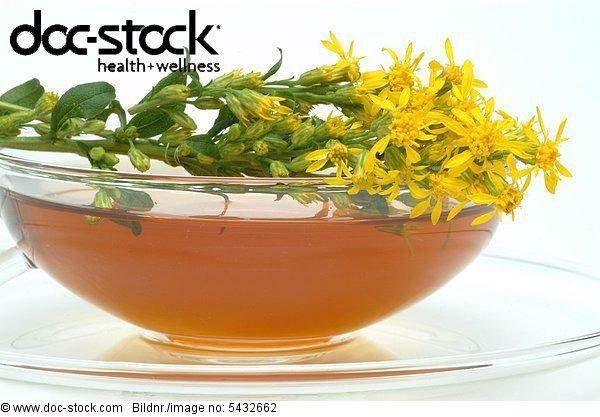 Golden rod - Solidago virgaurea - medicinal tea - medicinal plant - herbtea - te - infuso - tisana -