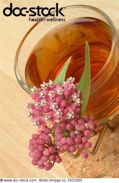 medicinal tea - herbtea - te - infuso - tisana -