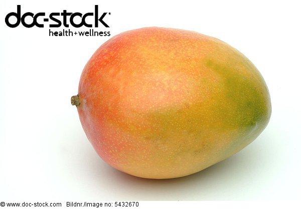 Mango - Mango Mangifera indica