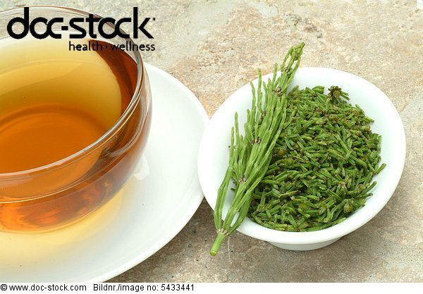 medicinal tea - te - Horsetail - medicinal plant - Equisto dei Campi - pianta medicinale