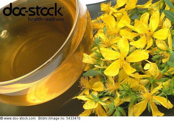 Saint John's Wort - medicinal plant - medicinal tea - herb - Hypericum perforatum - Iperico - tè medicinale