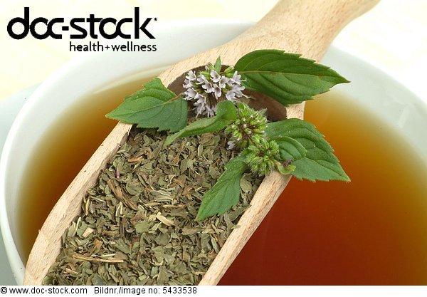 Peppermint - tea - Kräutertee - herbtea - medicinal use - herb - medicinal plant - Pepperminttea - Mentha piperita - Menta piperina
