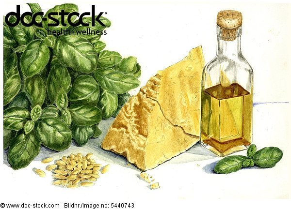 illustration - one bunch basil - one piece - lump of Parmesan cheese - pine nuts - pignolias - one bottle of olive oil