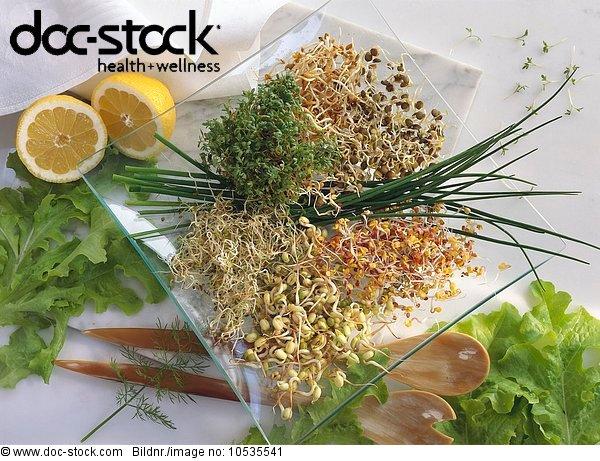 angenehm,appetitanregend stoffwechselfördernd harntreibend,Appetitlosigkeit Frühjahrsmüdigkeit,Arzneimittel Arznei Medikament,Besteck,blau